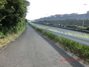 東京 いわき 自転車