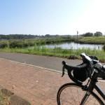 サイクリングロード 手賀沼自転車道