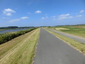 手賀沼サイクリングロード 北側