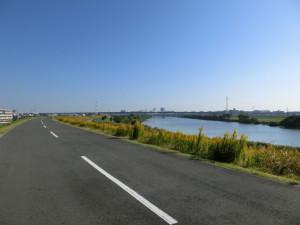 江戸川サイクリングロード ロードバイク 秋