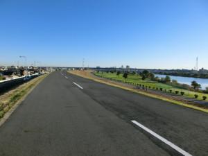 マドン madone 2.3 江戸川サイクリングロード 関宿