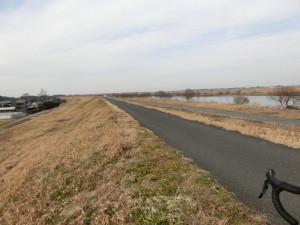 利根川サイクリングロード マドン2.3