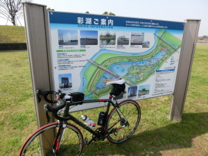 彩湖 サイクリングロード