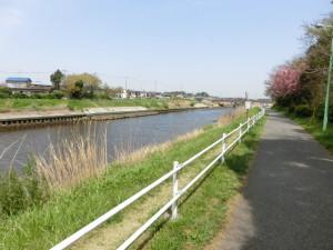 ロードバイク 花見川サイクリングロード 風景
