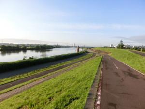 ロードバイク 江戸川サイクリングロード 早朝
