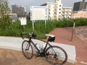 江戸川サイクリングロード グループライド