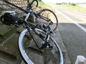 熱中症 日陰 自転車