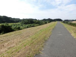 利根運河サイクリングロード サイクリング