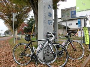 りんりんロード 岩瀬駅