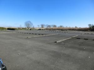 渡良瀬遊水地 駐車場 トランポ