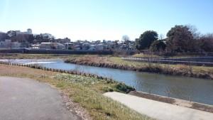 新河岸川 自転車