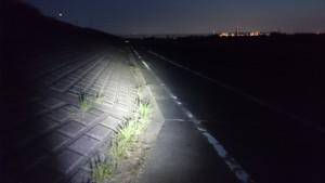江戸川サイクリングロード 夜間