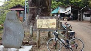 子ノ権現 自転車 ヒルクライム