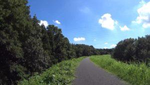 利根運河サイクリングロード 夏