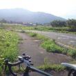 筑波 自転車