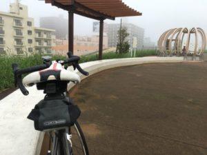 江戸川サイクリングロード 霧