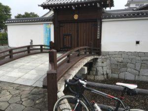 関宿 江戸川サイクリングロード 虫