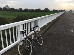 江戸川サイクリングロード タイヤ