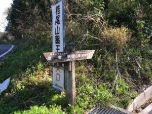 筑波 薬王院 ヒルクライム