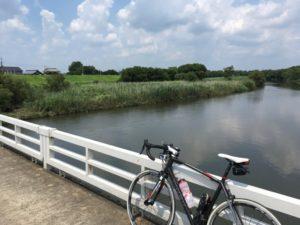 筑波 サイクリング 自然