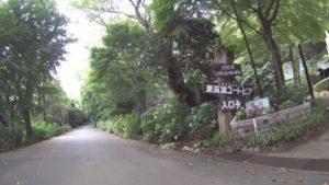 西光院 峰寺山 ヒルクライム