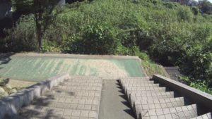 手賀沼サイクリングロード 国道6号