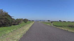 渡良瀬遊水地 サイクリングロード