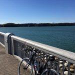 サイクリングロード巡り、多摩湖自転車道へ 途中に不思議なトンネルを走ってみる