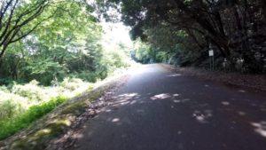 花見川サイクリングロード 花島公園 自転車