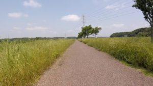 新川サイクリングロード 景観