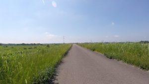 江戸川サイクリングロード 利根川サイクリングロード