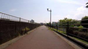 江戸川サイクリングロード 右岸 道幅