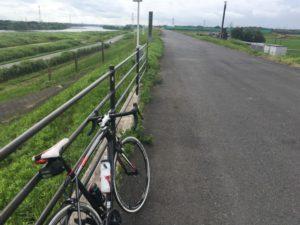 利根川サイクリングロード 6月