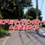 いつも行く江戸川サイクリングロードで良さげな坂道を見つける