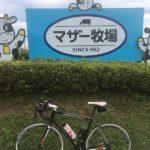ヒルクライムをしに千葉県の鹿野山、マザー牧場辺りを走ってみた