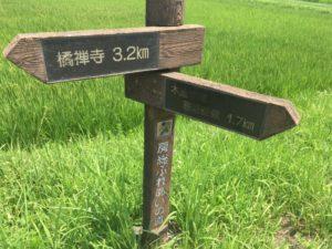 千葉 県道173号 ヒルクライム