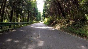 宇都宮森林公園 ヒルクライム