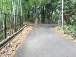 ショパン坂 多摩 坂