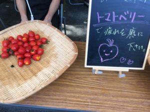 望郷センチュリーライド トマト