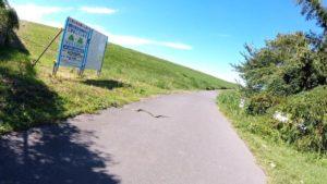利根川サイクリングロード へび