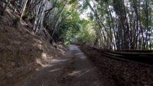 印旛沼サイクリングロード 草ぶえの丘 坂