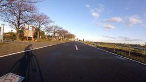 江戸川サイクリングロード 強風