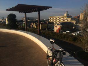 12月 江戸川サイクリングロード 寒さ