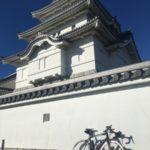 強風の中、江戸川サイクリングロードで関宿城まで