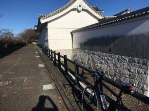 江戸川サイクリングロード 関宿 正月