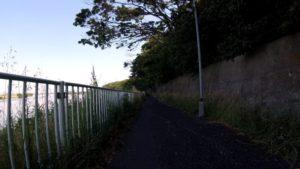 江戸川サイクリングロード 左岸 市川