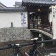 関宿 江戸川サイクリングロード サイクリング