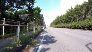 国道134号 海 箱根 ロードバイク