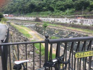 箱根 自転車 ヒルクライム