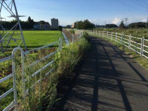 境川サイクリングロード 藤沢大和自転車道